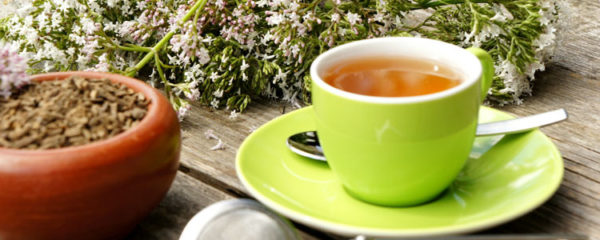 Valériane en thé