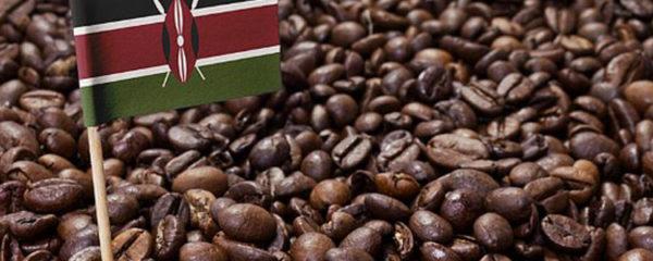 café du Kenya